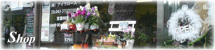 Shop | 店舗情報